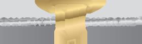 Cameron & Marroney Logo
